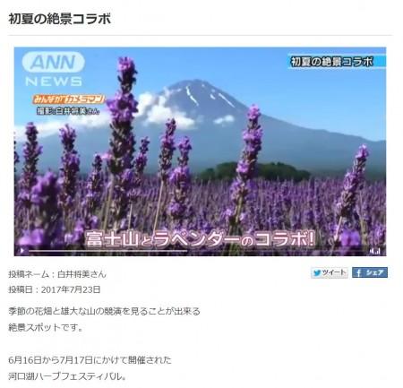 みんながカメラマン ラベンダーと富士山