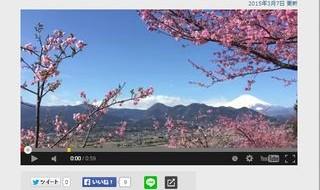 FNNビデオpost
