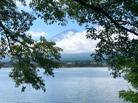 河口湖長崎公園の夏の風景