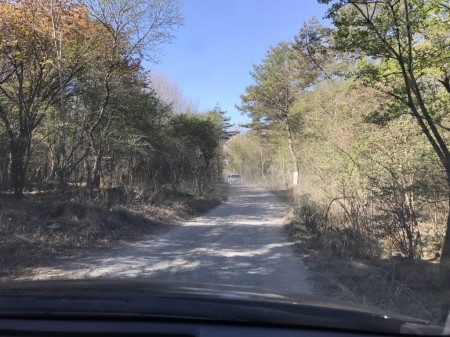 富士芝桜まつり 駐車場への砂利道
