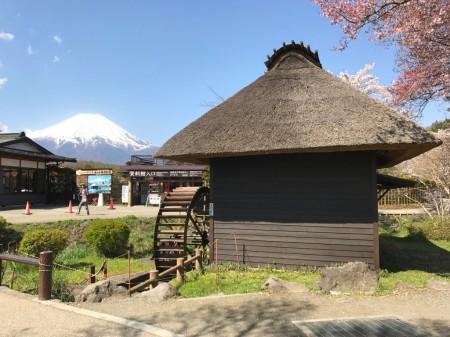 忍野八海 水車小屋と富士山