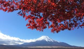 山中湖 長池親水公園の近くの紅葉と富士山