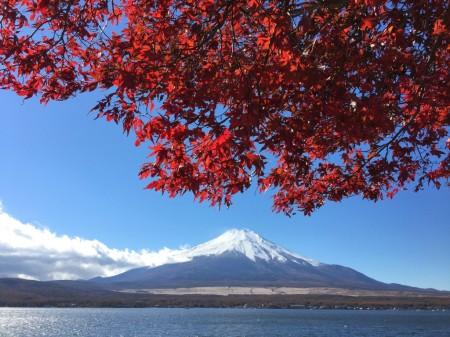 長池親水公園の近くの紅葉と富士山