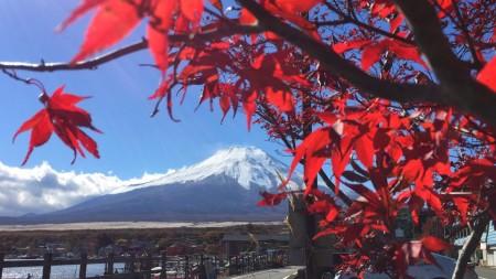 山中湖の紅葉と富士山