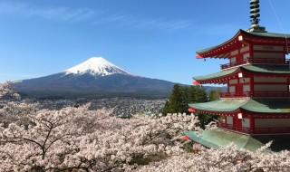 新倉山浅間公園の桜、富士山、忠霊塔