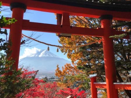 新倉山浅間公園の紅葉と富士山と鳥居