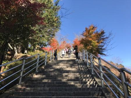 新倉山浅間公園の咲くや姫階段の紅葉