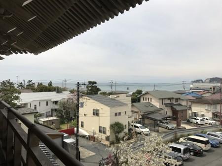 鎌倉光明寺の山門から由比ガ浜