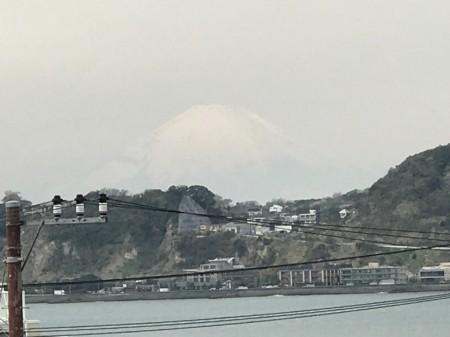 鎌倉光明寺の山門から富士山