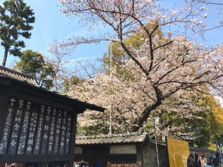 増上寺の入口