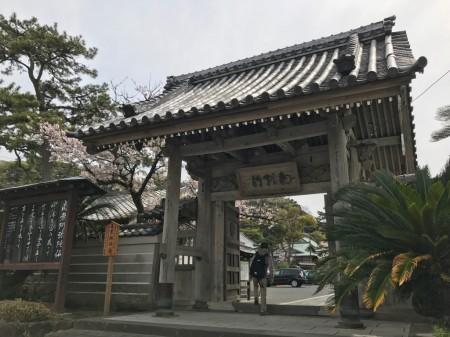 鎌倉光明寺の総門