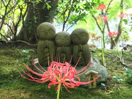 長谷寺の良縁地蔵とヒガンバナ