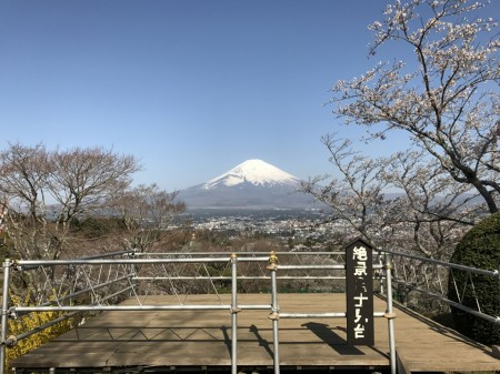 御殿場平和公園の桜と富士山と展望台