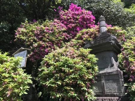 鎌倉 安養院の宝篋印塔