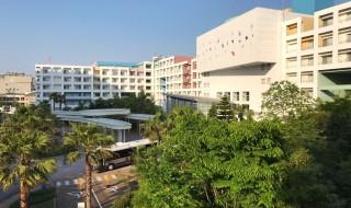三井ガーデンホテルプラナ東京ベイ 客室からの眺め