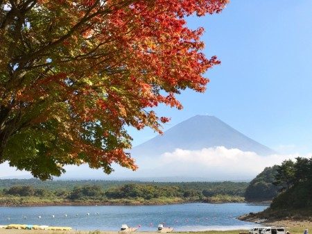 精進湖畔の紅葉
