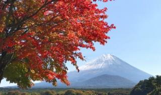 精進湖畔の紅葉と富士山