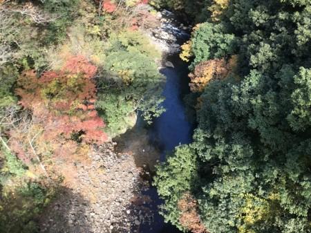 箱根早川橋梁(出山の鉄橋)の紅葉の撮影スポットの真下