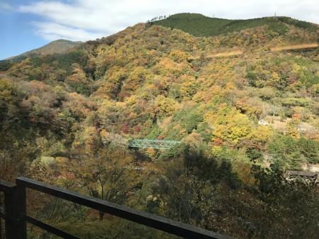 箱根早川橋梁(出山の鉄橋)の紅葉を箱根登山電車スイッチバック地点から