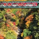 箱根早川橋梁(出山の鉄橋)の紅葉と箱根登山鉄道