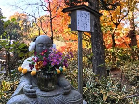 明月院の紅葉と地蔵