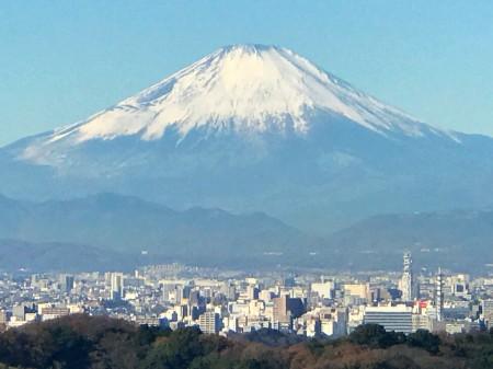 天園ハイキングコースの勝上献から富士山