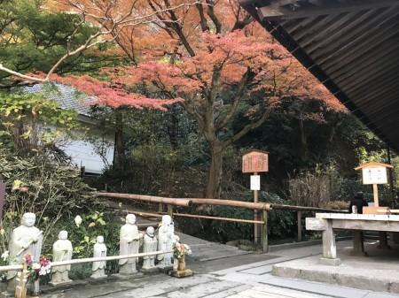 明月院の本堂後庭園の入口