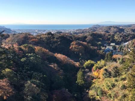 天園ハイキングコースの勝上献から建長寺と相模湾
