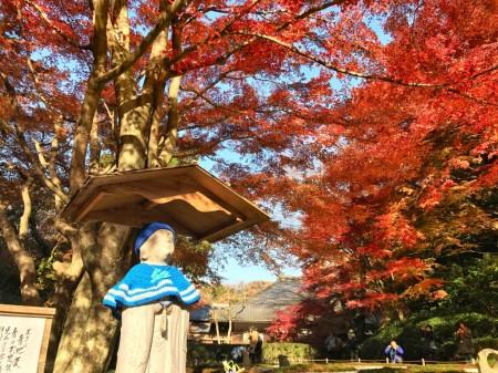 明月院の本堂後庭園の紅葉と地蔵
